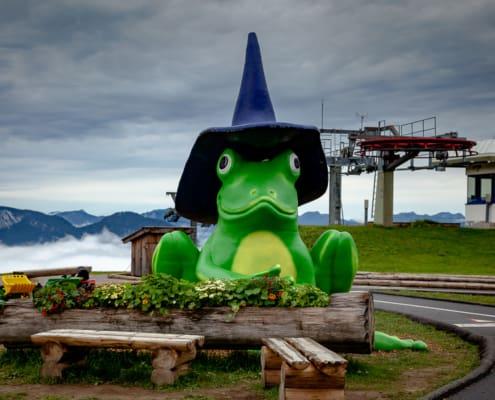 Zauberwald Frosch