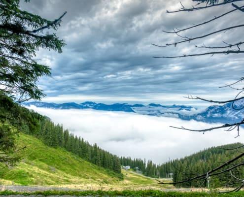 Tal Nebel