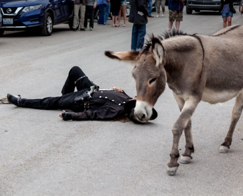 Esel zwischen Wild west Schiesserei in Oatman
